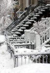 166730982_Winter